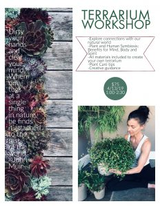 terrarium-workshop